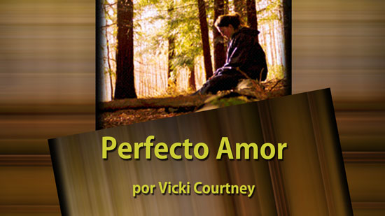 Perfect Love by Vicki Courtney
